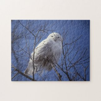 Snowy Owl - White Bird against a Sapphire Blue Sky fuji_puzzle