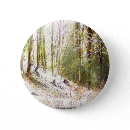 Snowy Sunlit Forest Glade #2 button