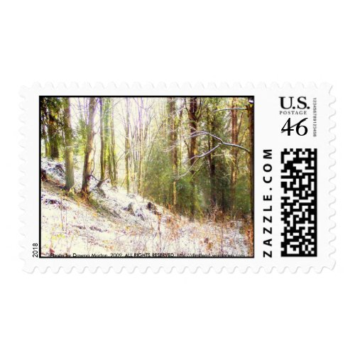 Snowy Sunlit Forest Glade #2 stamp