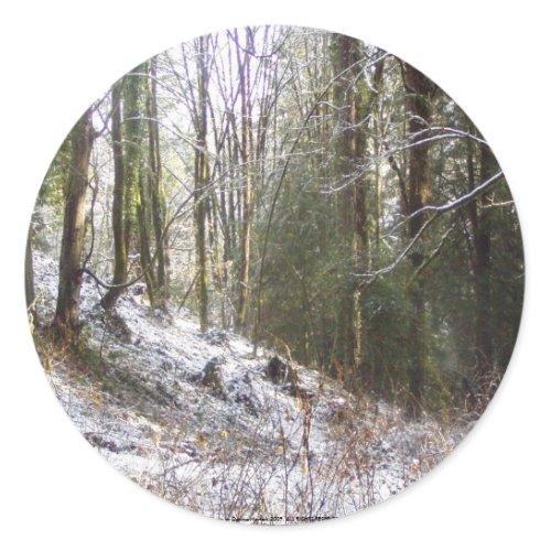 Snowy Sunlit Forest Glade sticker