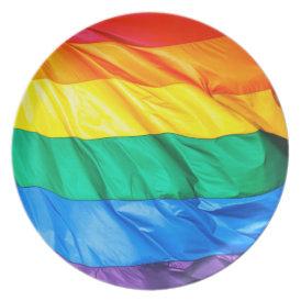 Solid Pride - Gay Pride Flag Closeup Dinner Plate