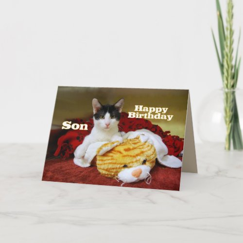 Son Happy Birthday Kitten with Toy Tiger card