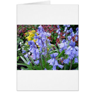Sonoma Winery Spring Bouquet Cards