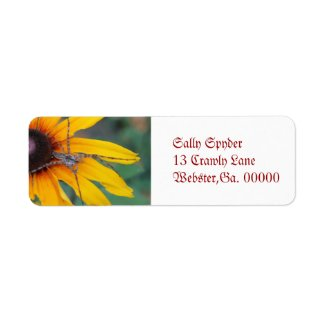 Spider Sitting on a Rudbeckia Custom Return Address Labels