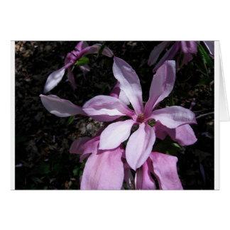 Spring Magnolia Pink Card