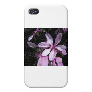 Spring Magnolia Pink Cases For iPhone 4