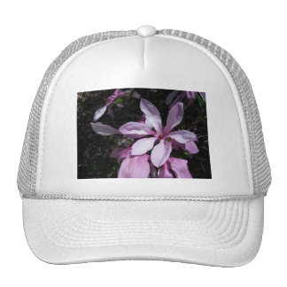 Spring Magnolia Pink Hats