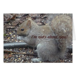Squirrel (1a) - I'm Nuts About You! - Customizable card