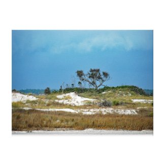 Storm approaching Dunes near Navarre Florida Canvas Print