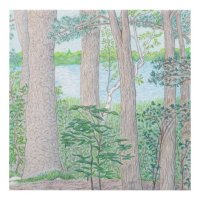 Summer Lake with Woods Colored Pencil Drawing Panel Wall ...