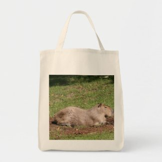 Sunbathing Capybara Canvas Bags