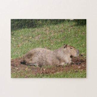 Sunbathing Capybara Puzzle