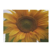 Sunflower Acrylic Wall Photo Acrylic Wall Art | Zazzle