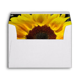 Sunflower & Friends Bouquet Envelopes
