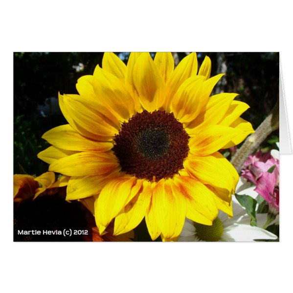 Sunflower & Friends Bouquet Greeting Card