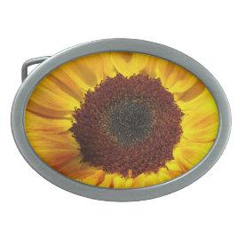 Sunflower Sun - Belt Buckle