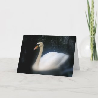 Swan Birthday card card