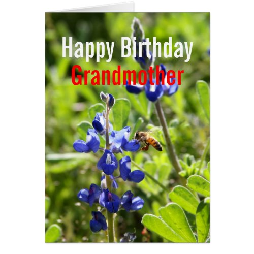 Texas Bluebonnet Grandmother Happy Birthday Card