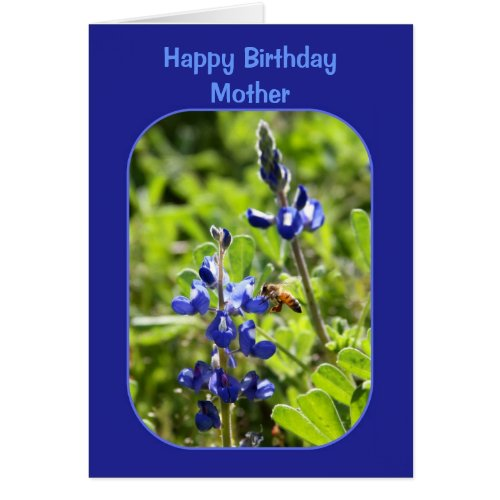Texas Bluebonnets Mother Happy Birthday