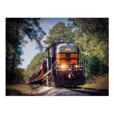 Texas State Railroad Postcard