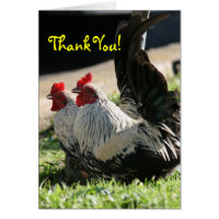 Thank You, Blank, Rooster Card