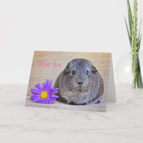 Thank You Guinea Pig Card Genera Daisy