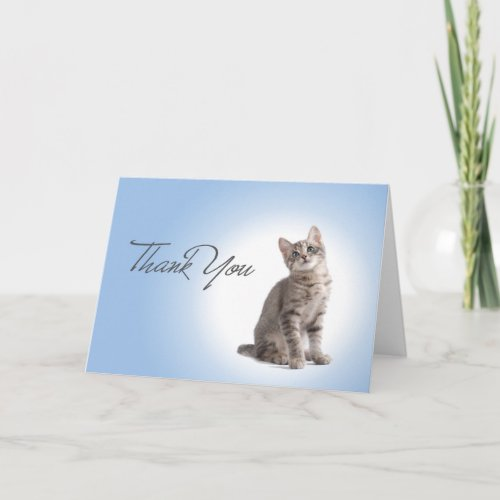 Thank You Kitten on Blue