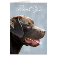 Thank You Labrador Retriever dog greeting card