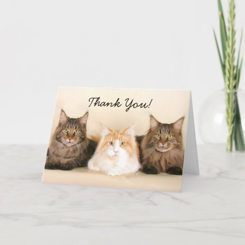Thank You Maine Coon Cats greeting card