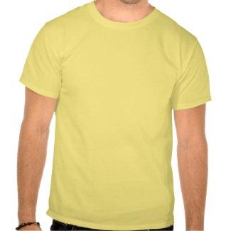 The aviator shirt