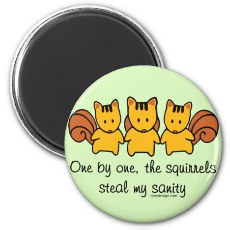 The squirrels steal my sanity magnet
