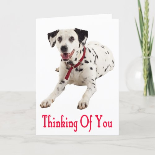 Thinking of You Dalmatian Puppy Dog Greeting Card