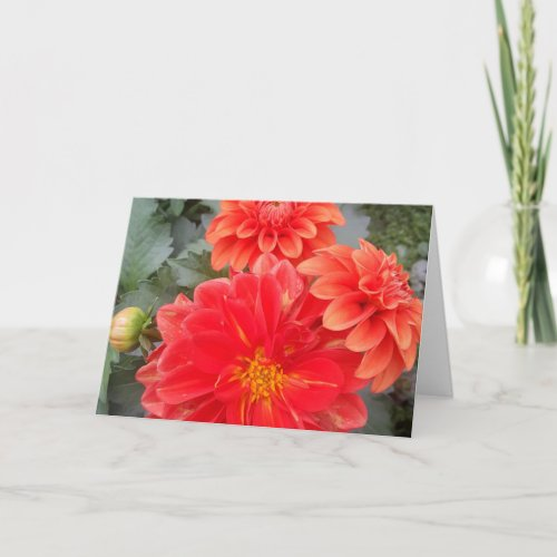 Three Dahlias Card