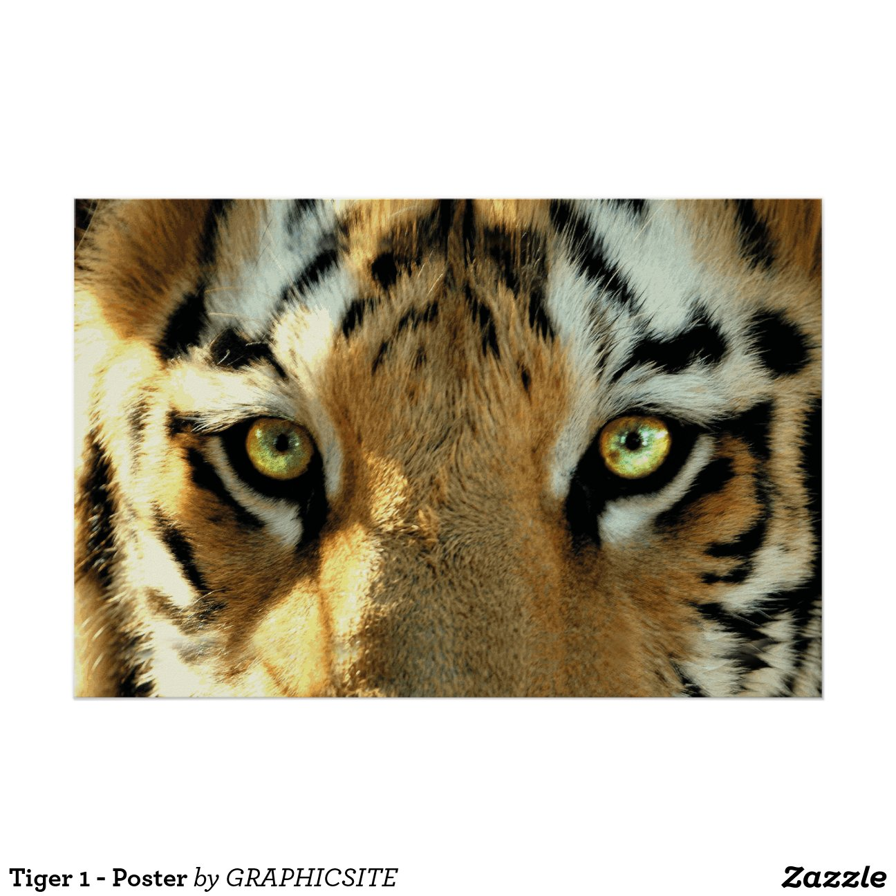 Tiger 1 - Poster Zazzle
