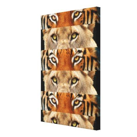Tiger and Lion eyes Photo Canvas Print