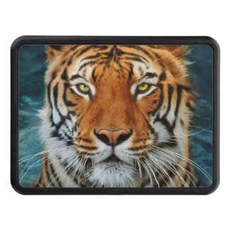 Tiger in Water Photograph Tow Hitch Covers
