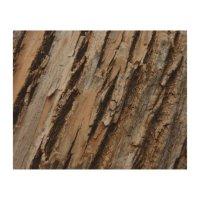 Tree Bark I Natural Abstract Textured Design Wood Wall Art ...