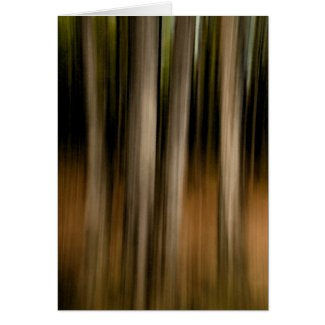 Trees abstract card