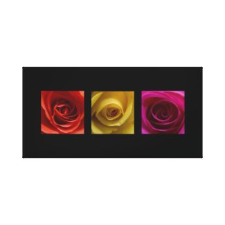 Triptych Roses orange yellow pink Panoramic wrappedcanvas