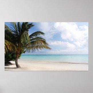 Tropical Beach print / poster