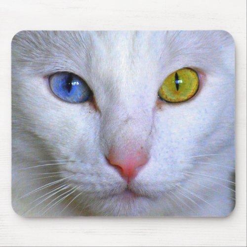 Turkish Angora Mousepad mousepad