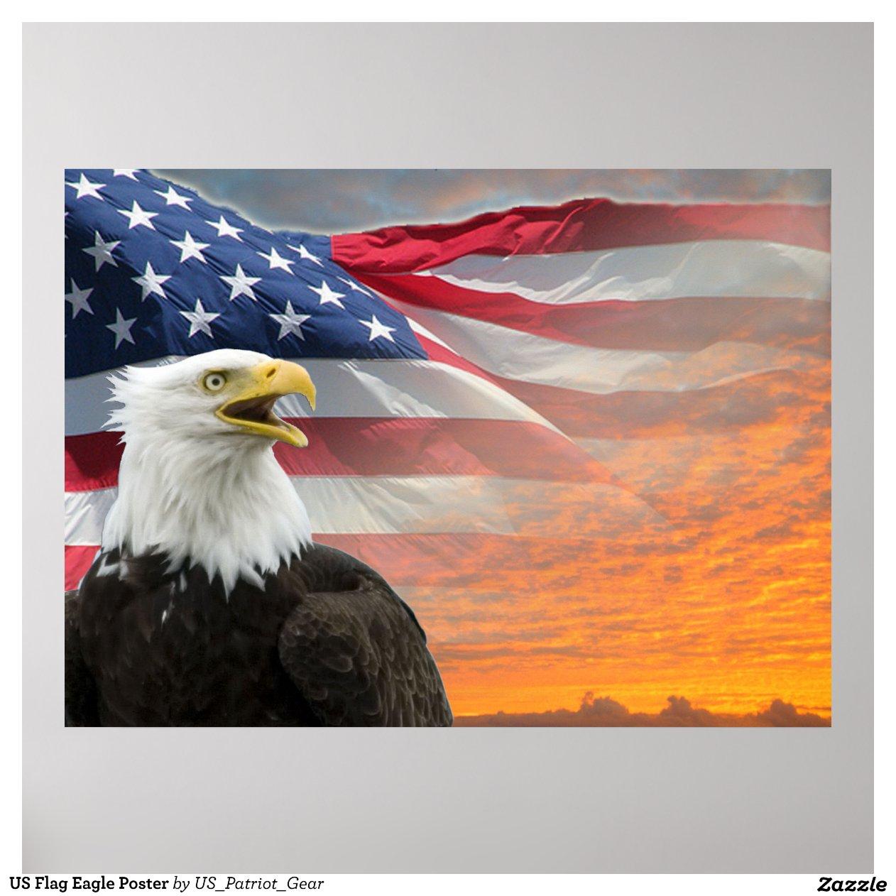 Flag Eagle Poster-rdd244291fa3441e4a15a91ecf003458e