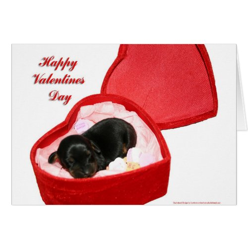 Valentines Day Doxie Greeting Card