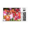 Vibrant Chicago Tulips Postage