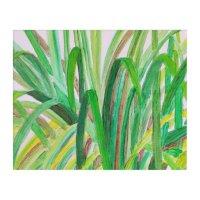 Vibrant Sugar Cane Acrylic Wall Art | Zazzle