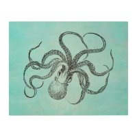 Vintage 1800s Octopus Teal Watercolor Blue Wood Wall Decor ...