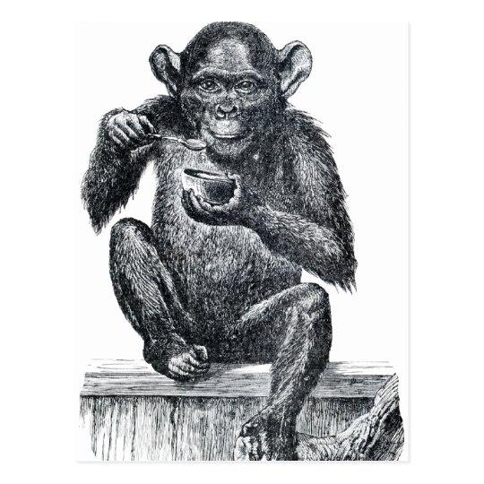 vintage baby chimpanzee drawing