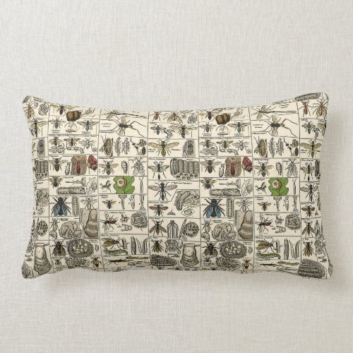 Vintage Entomology Lumbar Pillow