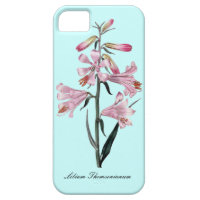 Vintage floral case iPhone 5/5S cases