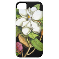 Vintage Magnolia Botanical iPhone 5 Covers
